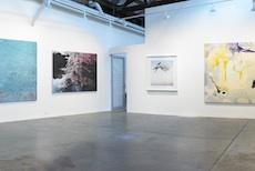 Annette Larkin Fine Art